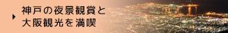 神戸の夜景観賞と大阪観光を満喫