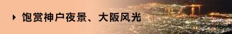 饱赏神户夜景、大阪风光